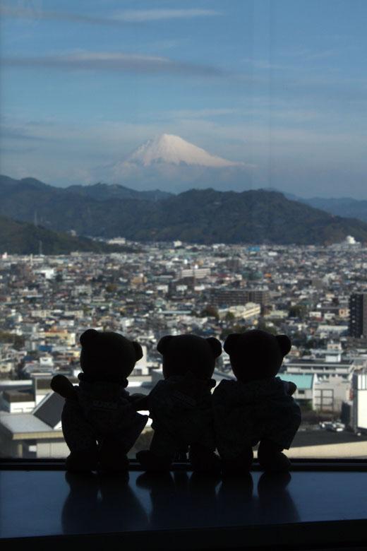 24富士山を見る3くま