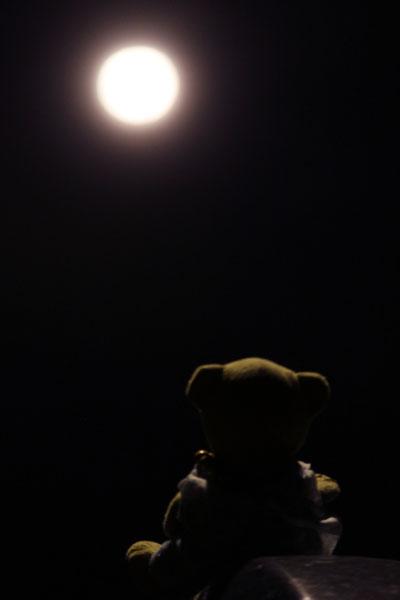 十六夜の月を見る