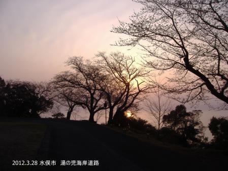 DSCF8513-001.jpg