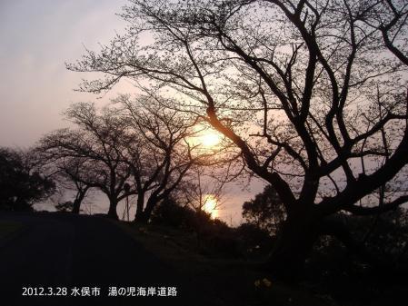 DSCF8514-001.jpg