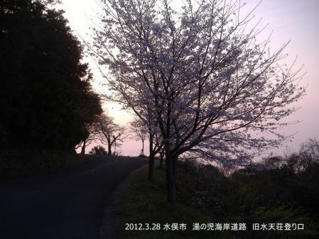 DSCF8518-001.jpg