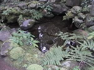 109滝尾神社・酒の泉