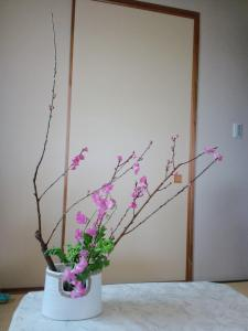 桃、スイトピー、菜の花
