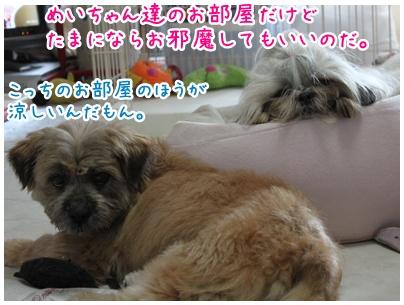2010-07-08-10.jpg