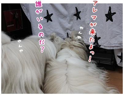 2010-07-09-01.jpg