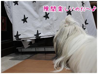 2010-07-09-02.jpg