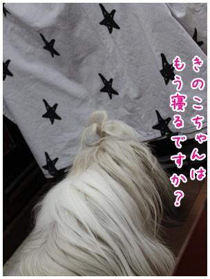 2010-07-09-04.jpg