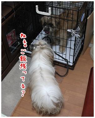 2010-07-10-04.jpg