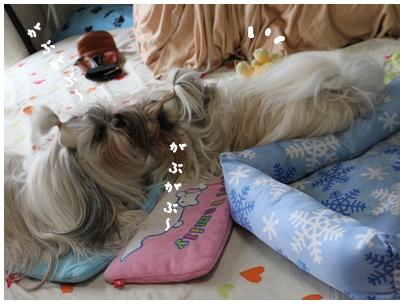 2010-07-15-01.jpg