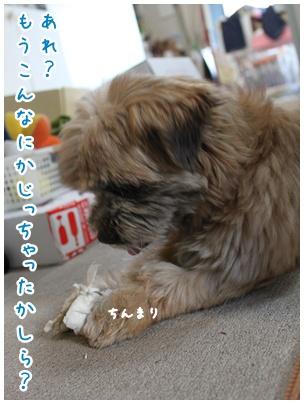 2010-07-17-05.jpg