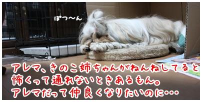 2010-07-18-06.jpg