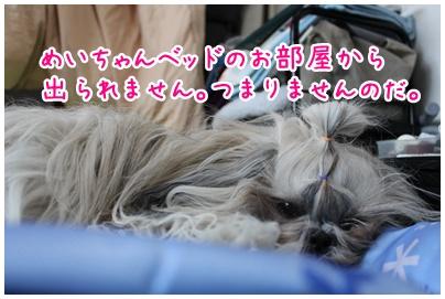 2010-07-23-02.jpg