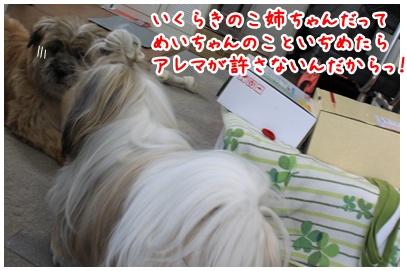 2010-07-23-05.jpg