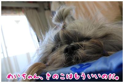 2010-07-23-06.jpg