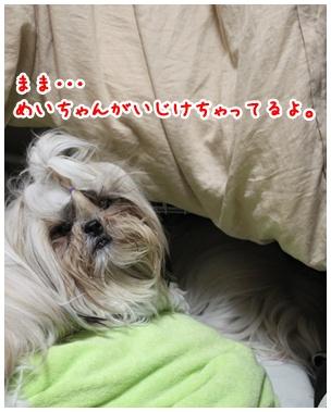 2010-07-24-01.jpg