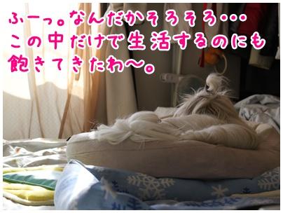 2010-07-29-01.jpg