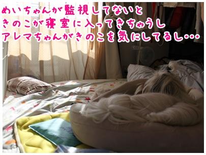 2010-07-29-02.jpg