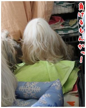 2010-07-29-07.jpg