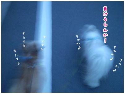 2010-07-30-03.jpg