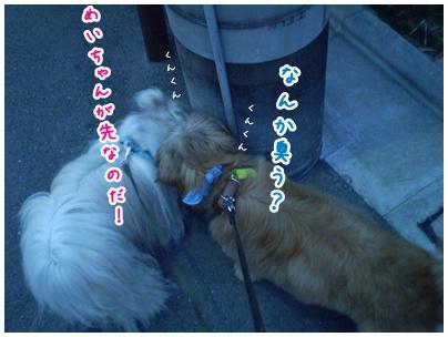 2010-07-30-04.jpg