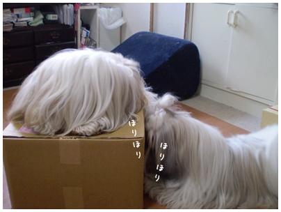 2010-07-31-01.jpg