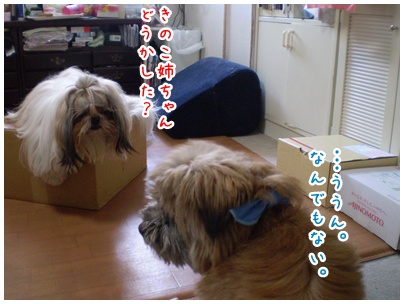 2010-07-31-03.jpg