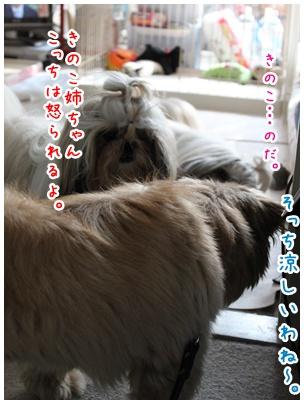 2010-08-02-02.jpg