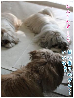 2010-08-02-03.jpg