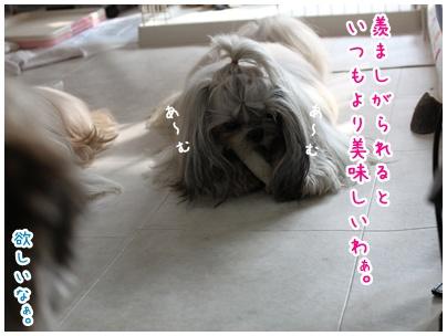 2010-08-02-04.jpg