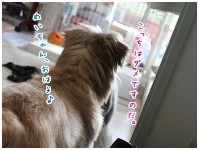 2010-08-04-01.jpg