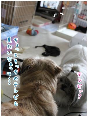 2010-08-04-02.jpg