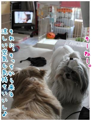 2010-08-04-03.jpg