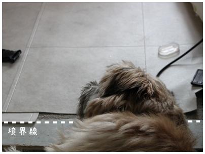 2010-08-04-09.jpg