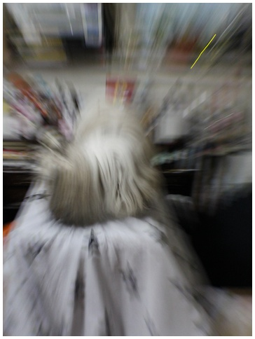 2010-08-06-03.jpg