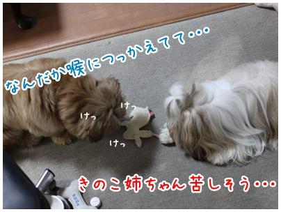 2010-08-09-03.jpg