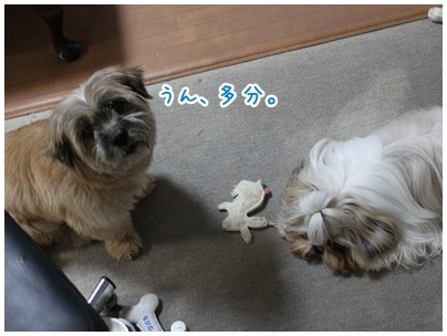 2010-08-09-04.jpg