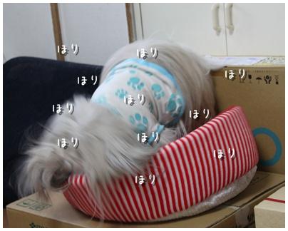 2010-08-13-01.jpg