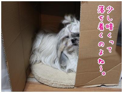 2010-08-14-01.jpg