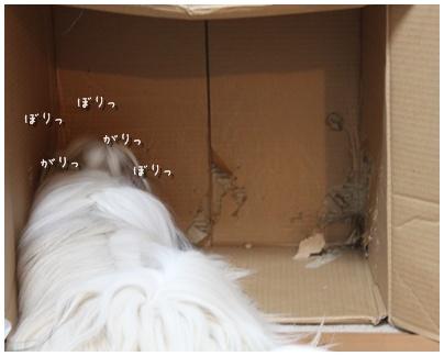2010-08-15-01.jpg