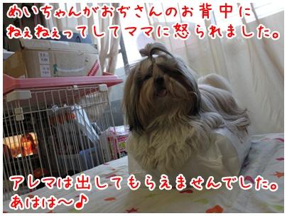 2010-08-17-04.jpg