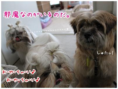 2010-08-21-01.jpg