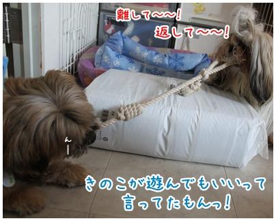 2010-08-22-04.jpg