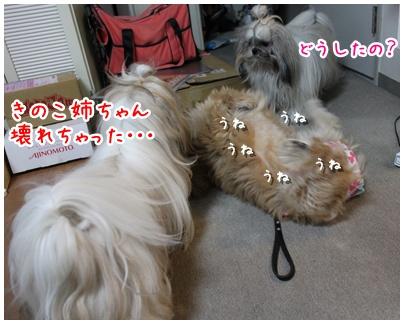 2010-08-23-03.jpg