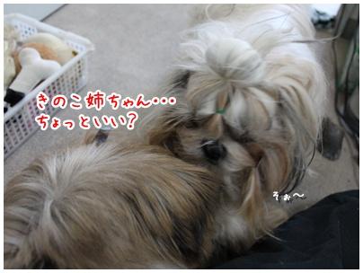 2010-08-24-04.jpg