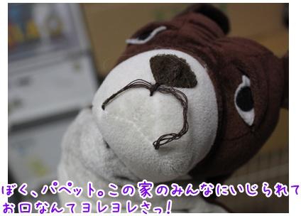 2010-08-26-01.jpg