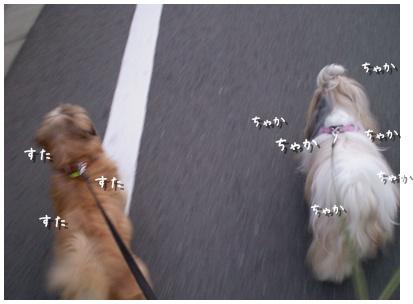 2010-09-02-02.jpg