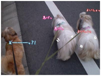 2010-09-02-03.jpg