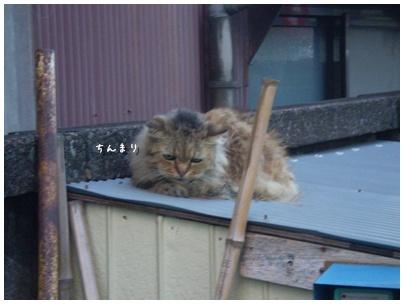 2010-09-03-02.jpg