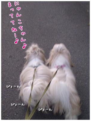 2010-09-03-03.jpg
