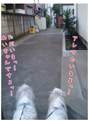 2010-09-03-04.jpg